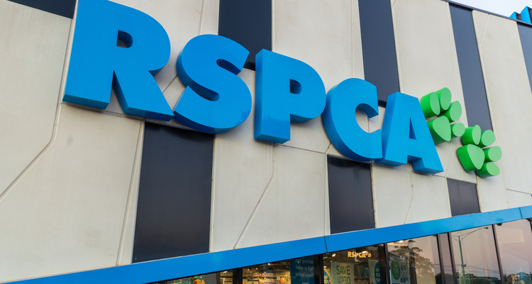 RSPCA staff contracts